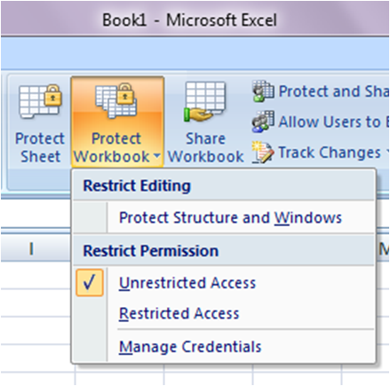 Protection in excel wizard of excel protect workbook ibookread